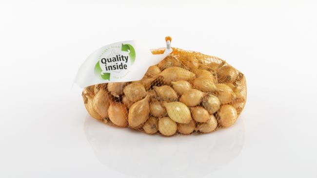 Organic Quality inside onion sets